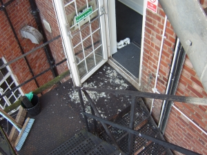 Pigeon Fouling on Fire Escape